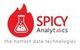 Spicy Analytics Kft.  - Állás, munka